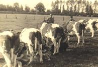 Historie-de-Wijte-Eefde-Achterhoek-Lochem