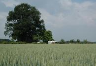 SVR-camping-Eefde-Zutphen1
