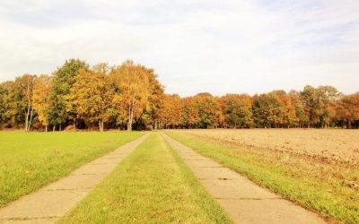 Oprijlaan de Wijte chterhoek Gelderland vergaderruimte